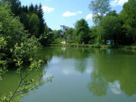 L`Orchid�e Home depuis l`�tang - Chambres d`h�tes en Haute-Marne